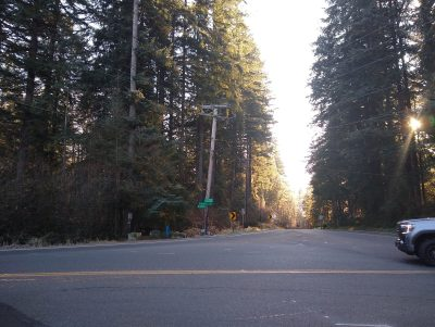 A road intersection in the forest showing the trailhead for the Cherry Creek Falls hike