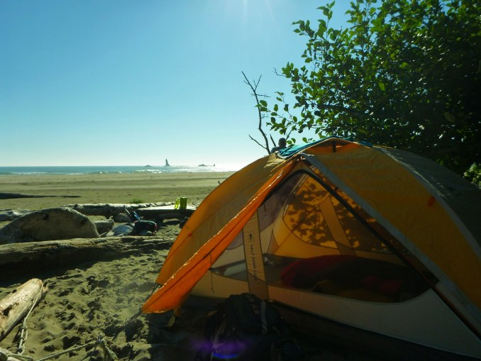 A yellow and white tent in the foreground sits on the sand near driftwood logs on a beach in Olympic National Park, a favorite place for last minute backpacking