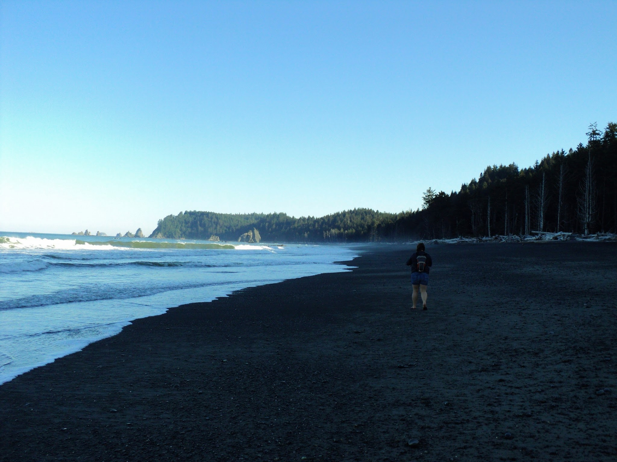 A person walks on a sandy beach next to the forest. In the distance, rocks in the water are lit up by the sun. It's early morning and the beach is still in shadow