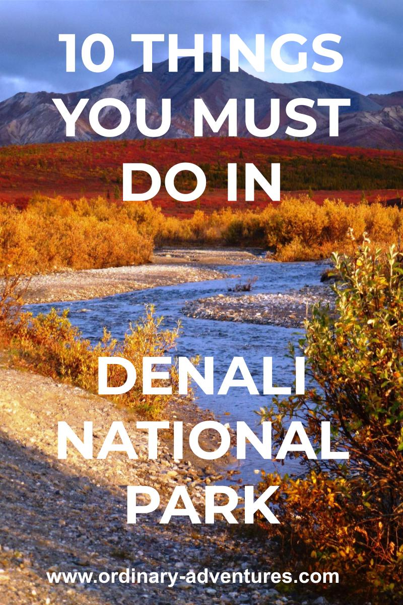 a bright blue river winds through fall colored shrubs at sunset in denali national park in the fall. Text reads: 10 things you must do in Denali national park