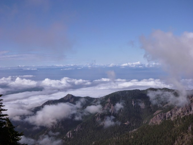 low clouds fill the valley below Hurricane Ridge in Olympic National Park. In the distance is Vancouver Island and closer in the lower tree covered hills