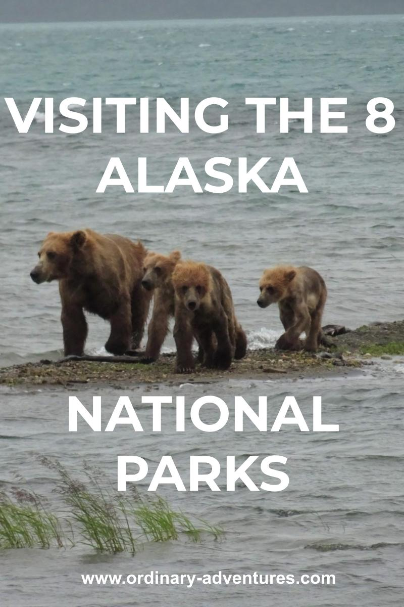 A brown bear with three cubs stands on a small gravel bar in the middle of the water on a gray day. Text reads: visiting the 8 alaska national parks
