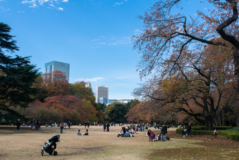 best parks in tokyo - shinjuku gyoen