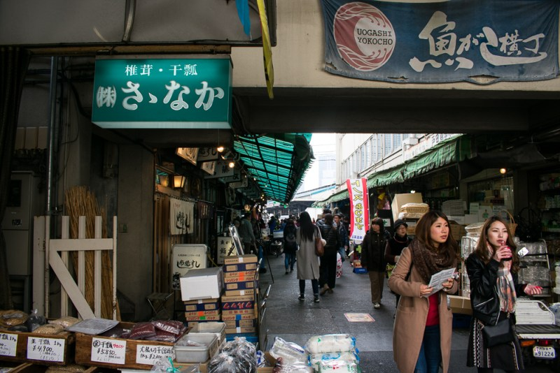 what to do at tsukiji fish market
