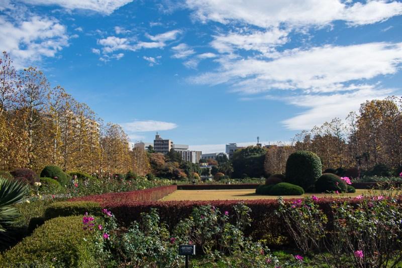 top park in japan