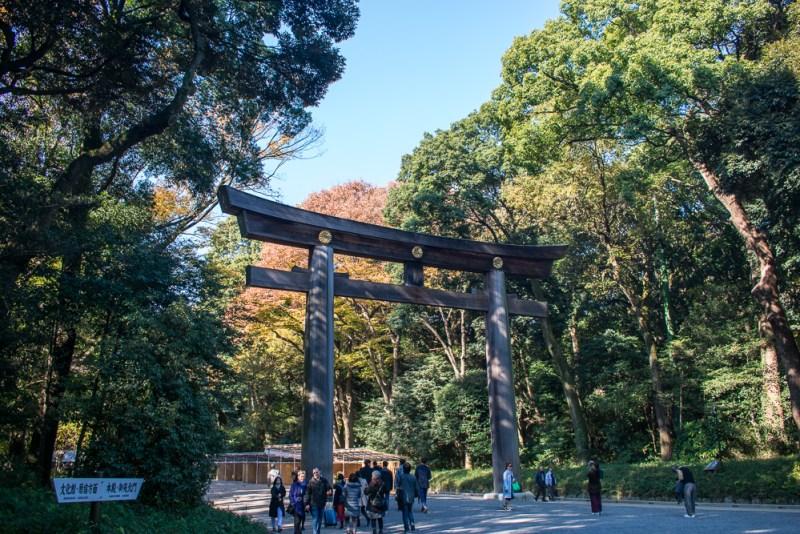 things to do meiji shrine