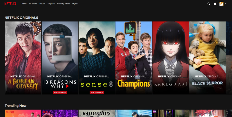 netflicks review