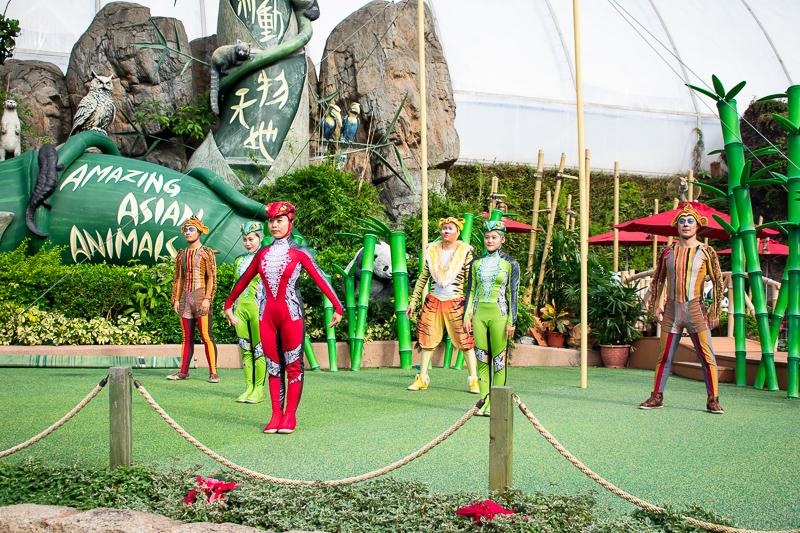 acrobatic performance in ocean park