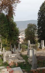 Lovely cemetery in Sighisoara, in the Transylvania Region of Romania. No Dracula jokes, please.