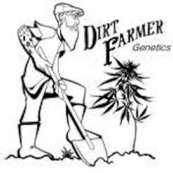 DIRT FARMER GENETICS