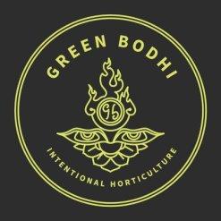 GREEN BODHI
