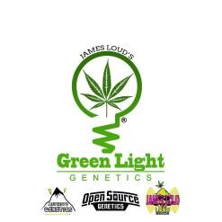 JAMES LOUD'S GREEN LIGHT GENETICS