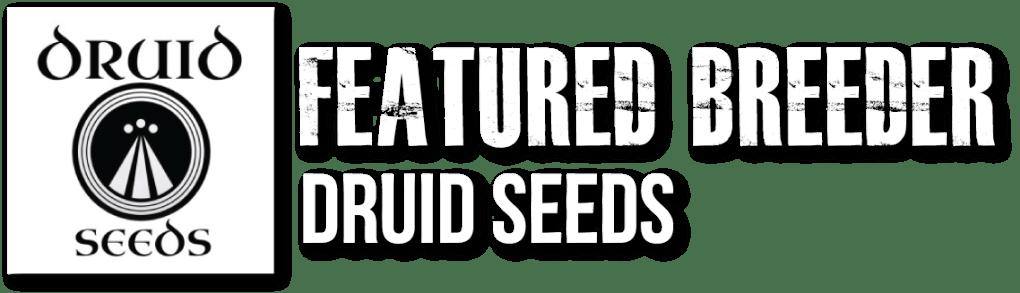 Cannabis Seeds | Oregon Elite Seeds | Top Ranked Cannabis & Hemp