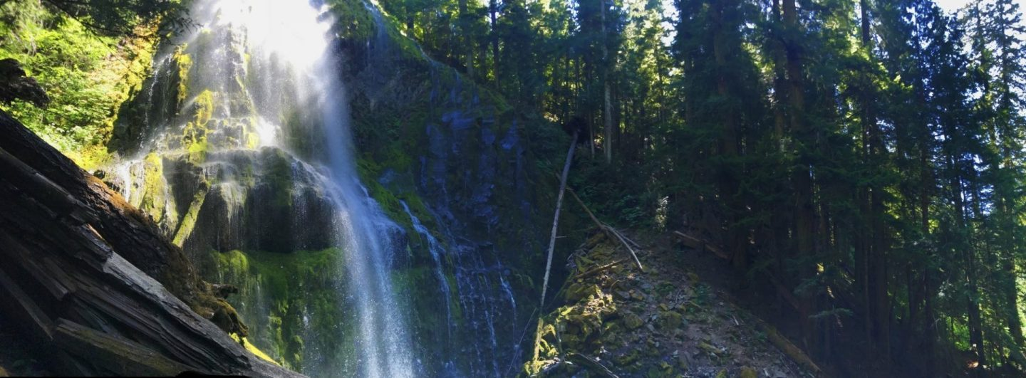 A panorama of Lower Proxy Falls - a 226 foot cascade waterfall. Just over an hour from Eugene, it's the perfect trail for kids: diverse landscape, two waterfalls, and it's only 1.5 miles.  One of the best waterfall hikes in Oregon.