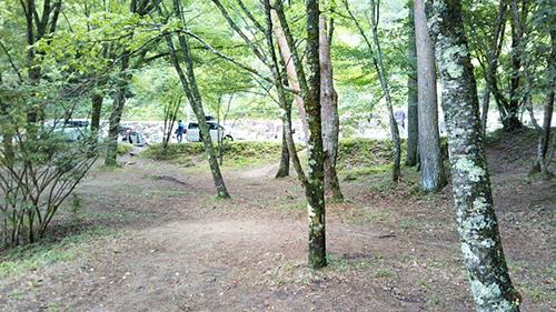 岩倉ダムキャンプ場サイトの様子