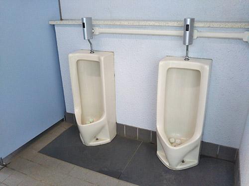 若洲公園キャンプ場トイレ