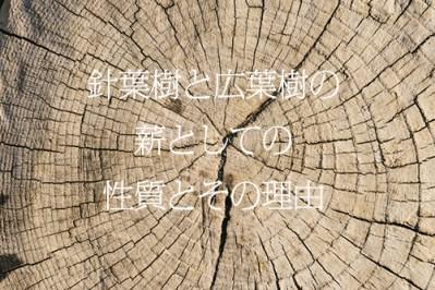 針葉樹と広葉樹の薪としての性質とその理由