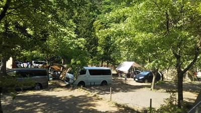 モミの木キャンプ場オートキャンプサイト