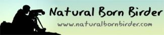 Natural Born Birder