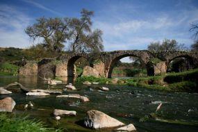 The Puente de los Merinos