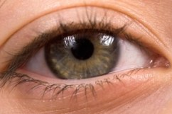 http://www.dreamstime.com/royalty-free-stock-photography-bright-green-eye-long-lashes-image12596357