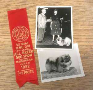 dog ribbon memorabilia