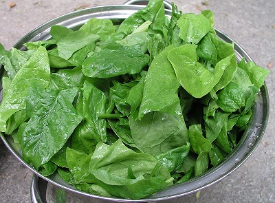 spinach home remedy for hemolytic anemia