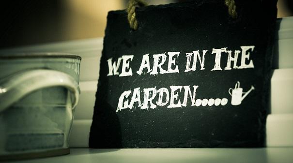 saving money on your own garden