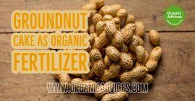 Groundnut Cake As Organic Fertilizer