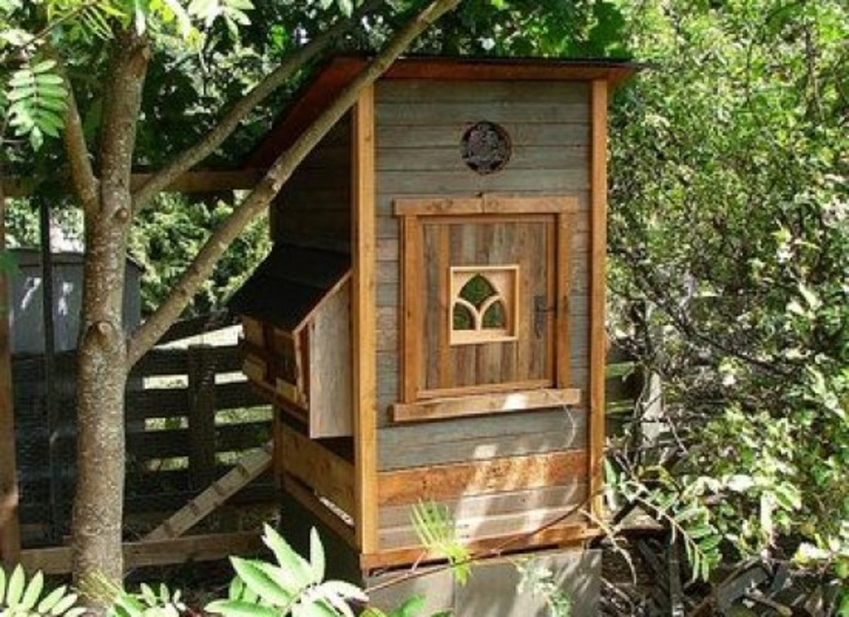 Dog Houses Chicken Coops And Cat Houses Oh My Organic