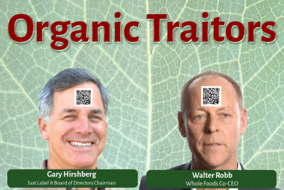 Organic traitors Hirschberg and Robb