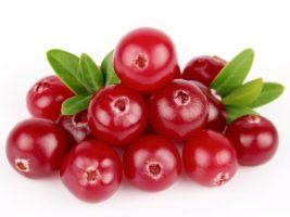 img_8_beneficios_do_gengibre_22889_orig 5 alimentos que ajudam a reduzir a celulite