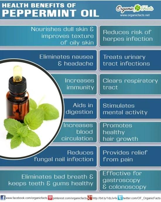 Symptom Guide & Profiles of Essential Oils (5/6)