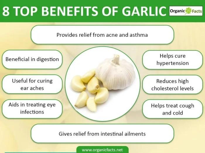 Garlic Uses Health