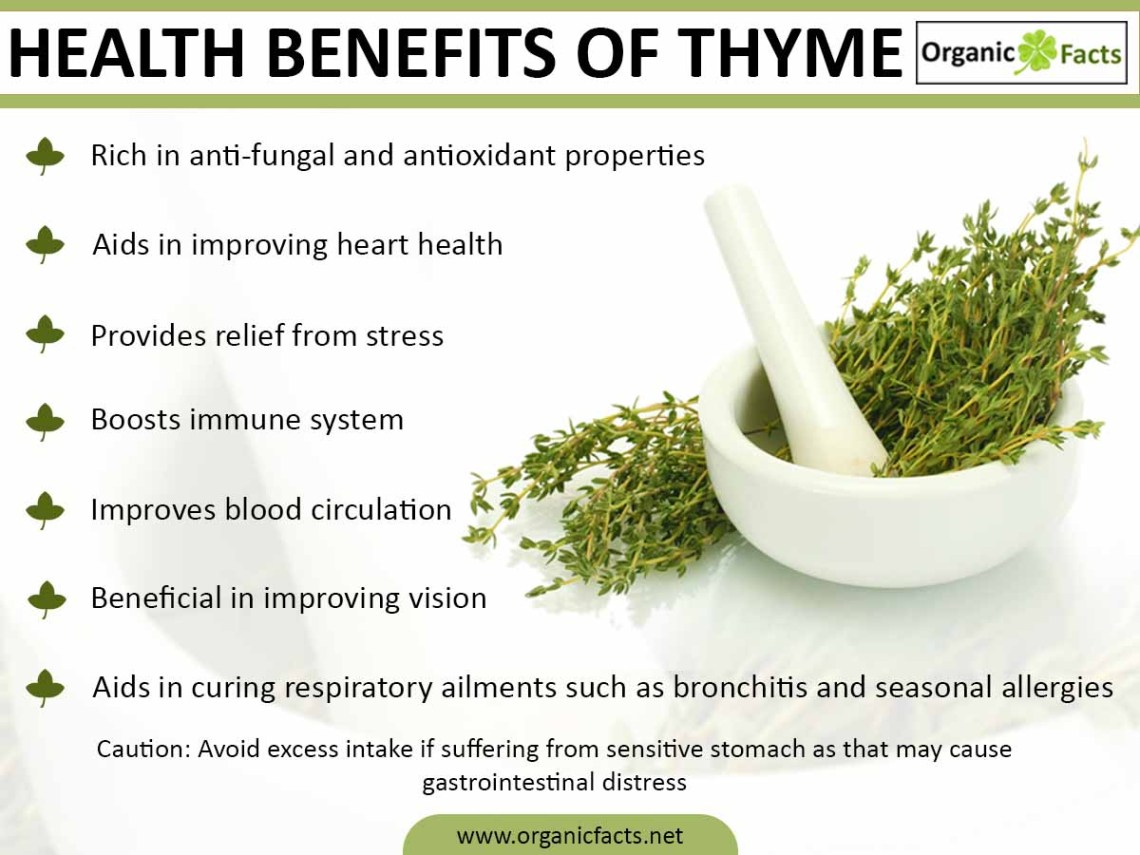 Health Benefits of Thyme | Organic Facts