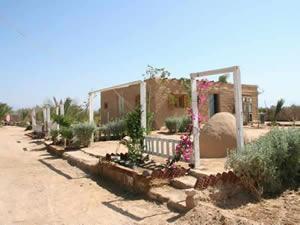Organic Holidays - Habiba Organic Farm, Habiba Village, Arab Hemdan.