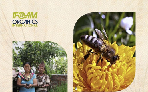 IFoam Organics 2017 ANNUAL REPORT IS NOW AVAILABLE.