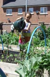 Nurseries and Primary Schools