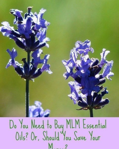 Are doTerra Oils Worth The Money?