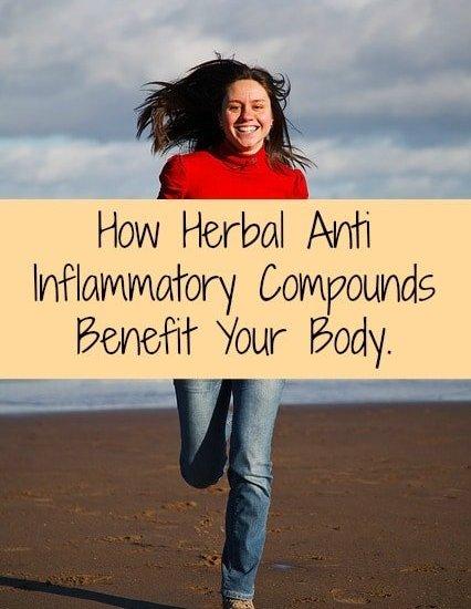 Zyflamend whole body benefits