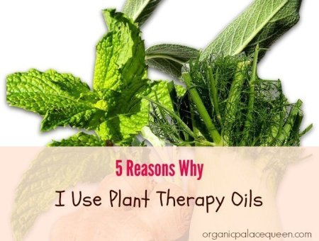Plant Therapy Oils Reviews