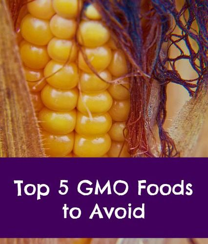 top 5 genetically modified foods to avoid