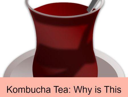 where can I get kombucha tea