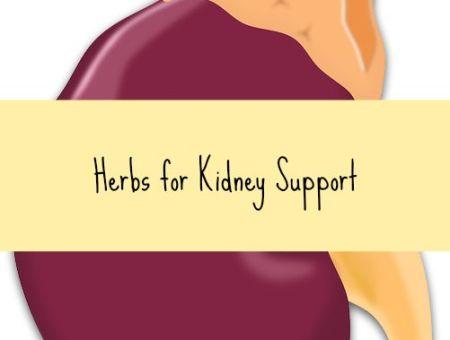 kidney vitamins supplements