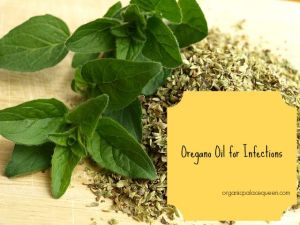 oregano oil for infections