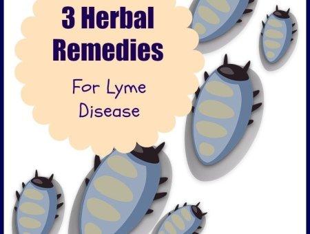 burbur Lyme detox