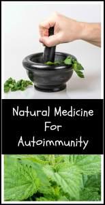 Natural medicine for autoimmune disease