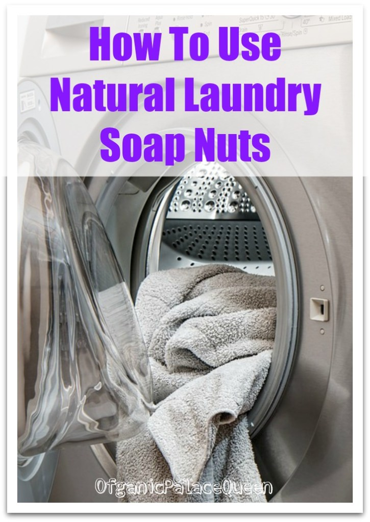 Non toxic laundry detergent