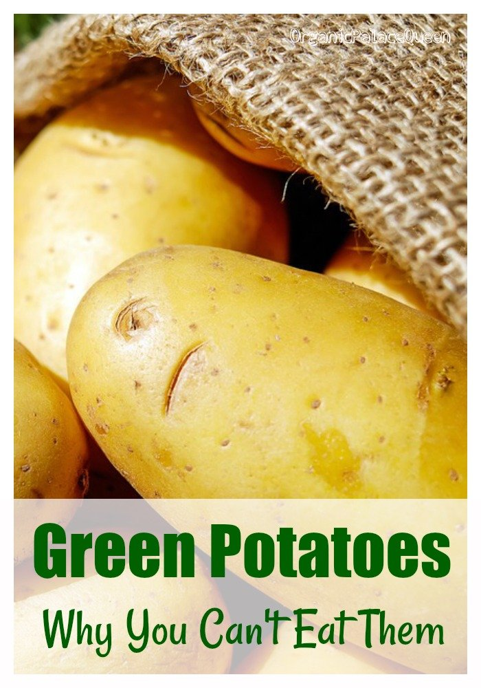 Why green potatoes aren't safe to eat