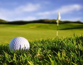 """Cómo prevenir """"mancha grande"""" en el pasto de golf"""